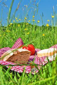 picknicken-gezellig_667x1000